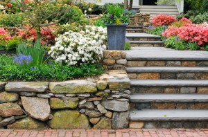 Landscaping ideas for your garden